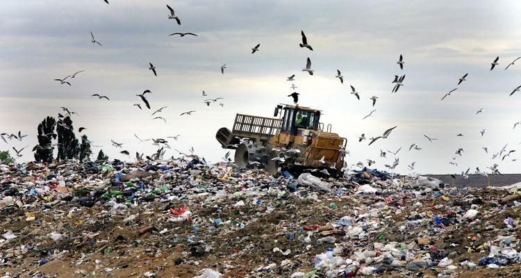 reducir tus cantidades de residuos propósitos 2016 más sostenible