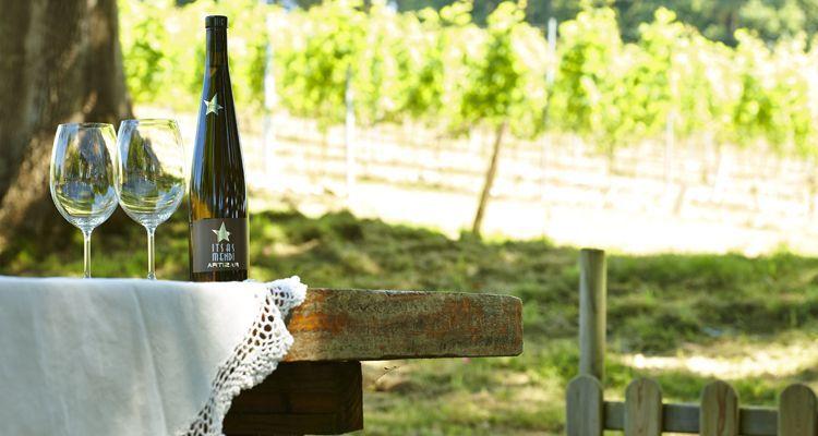 upcycling botella de vino txacolí