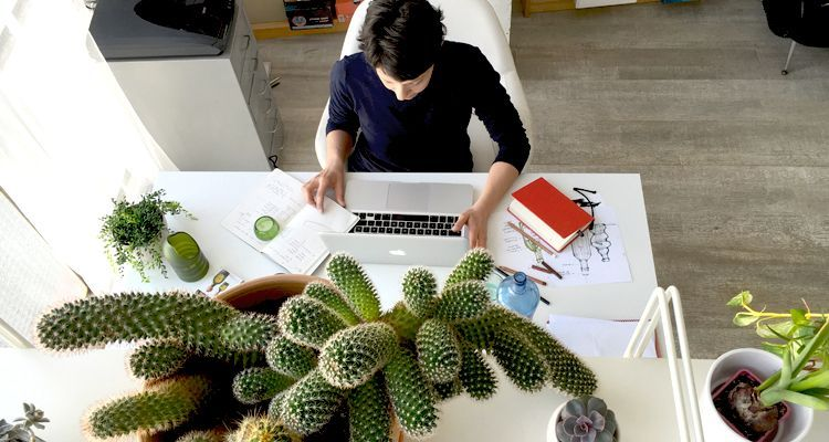 reduce waste in your workplace plants