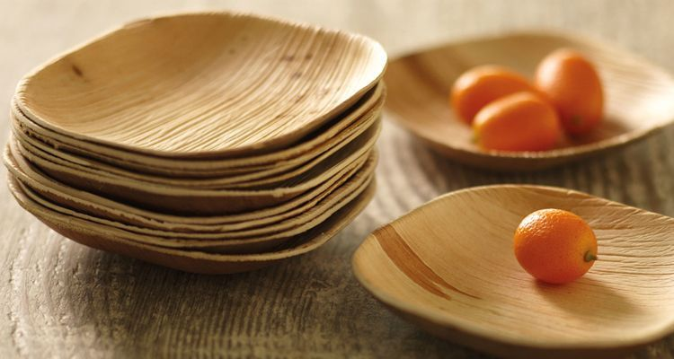 Image result for eco friendly disposable tableware
