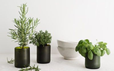 Lagom, a Swedish concept that you are going to love